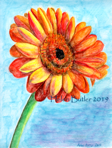 Marigold - water-soluble crayons