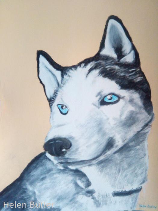 Husky dog - charcoal