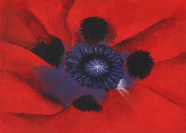 Poppies - acrylic