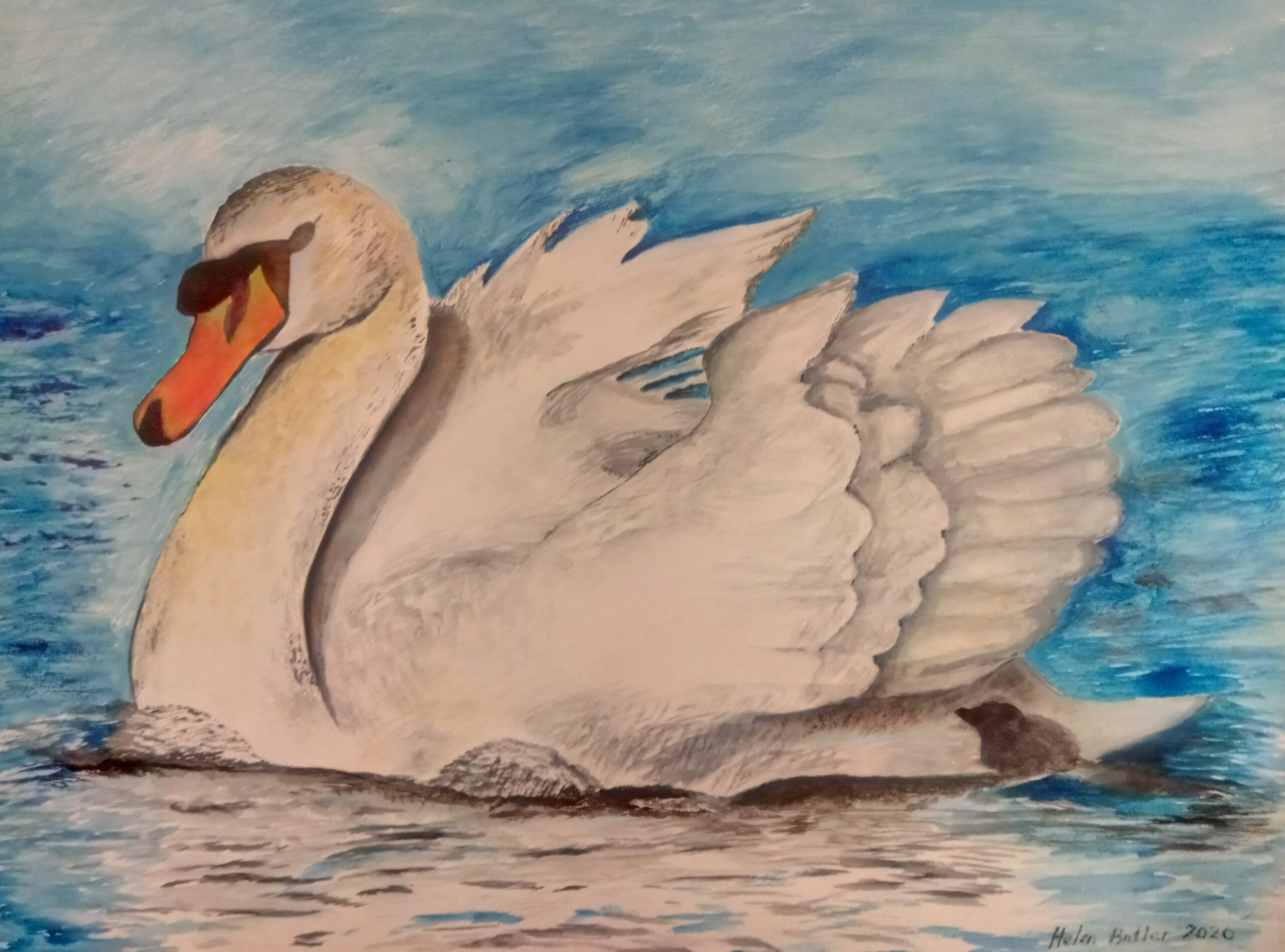 Watercolour commission of a swan