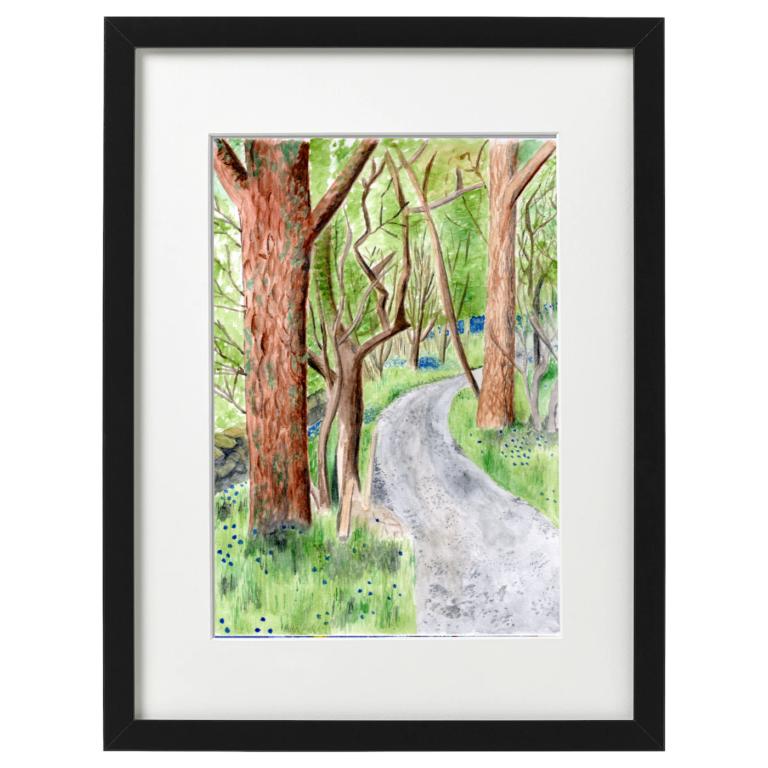 Blarbuie Woodland - Watercolour