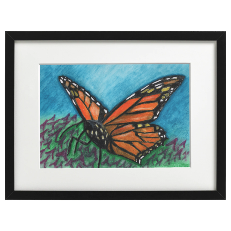 Butterfly - Watercolour crayon on A4 Watercolour paper