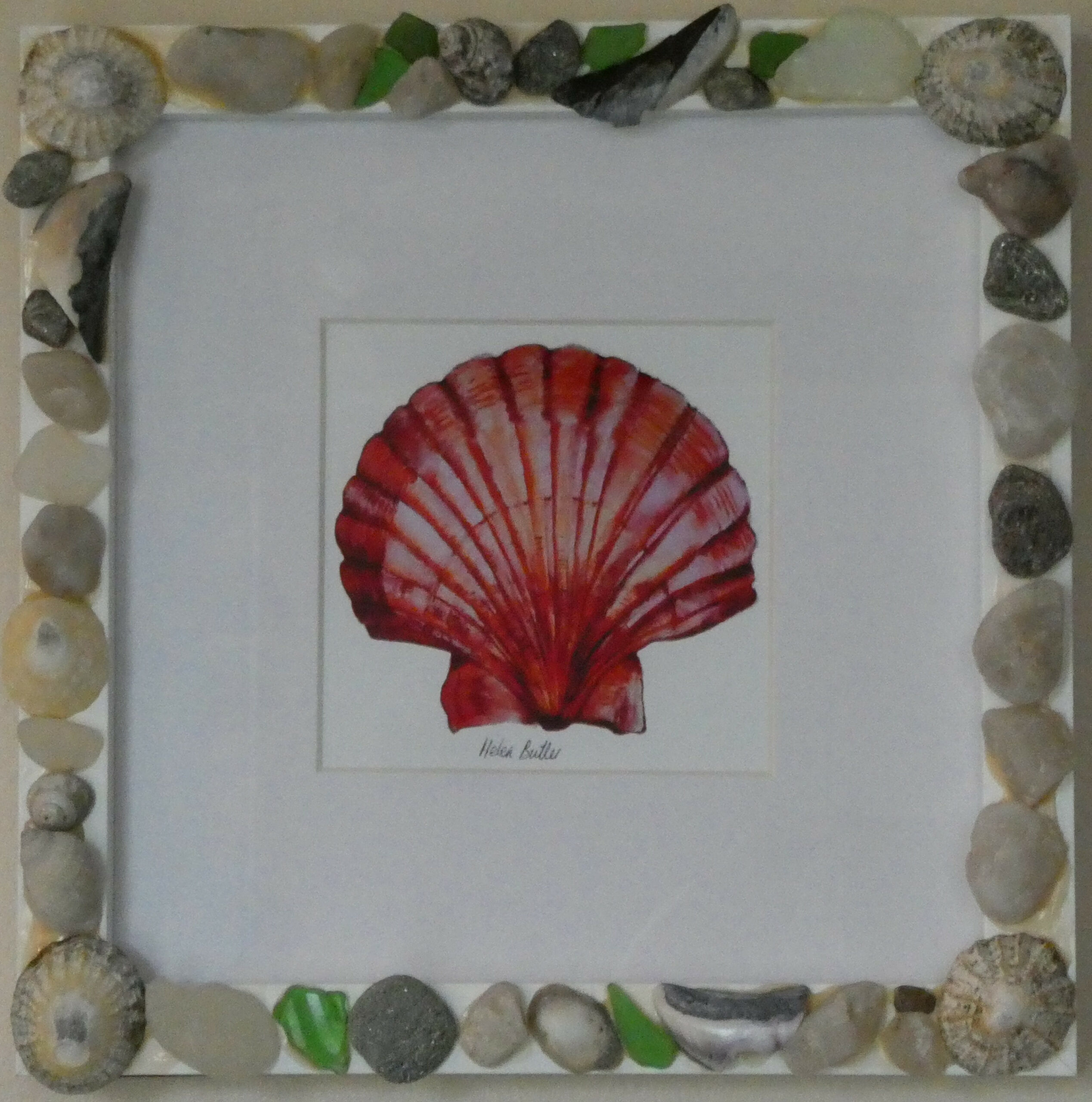 Scallop shell in sea glass and shell frame